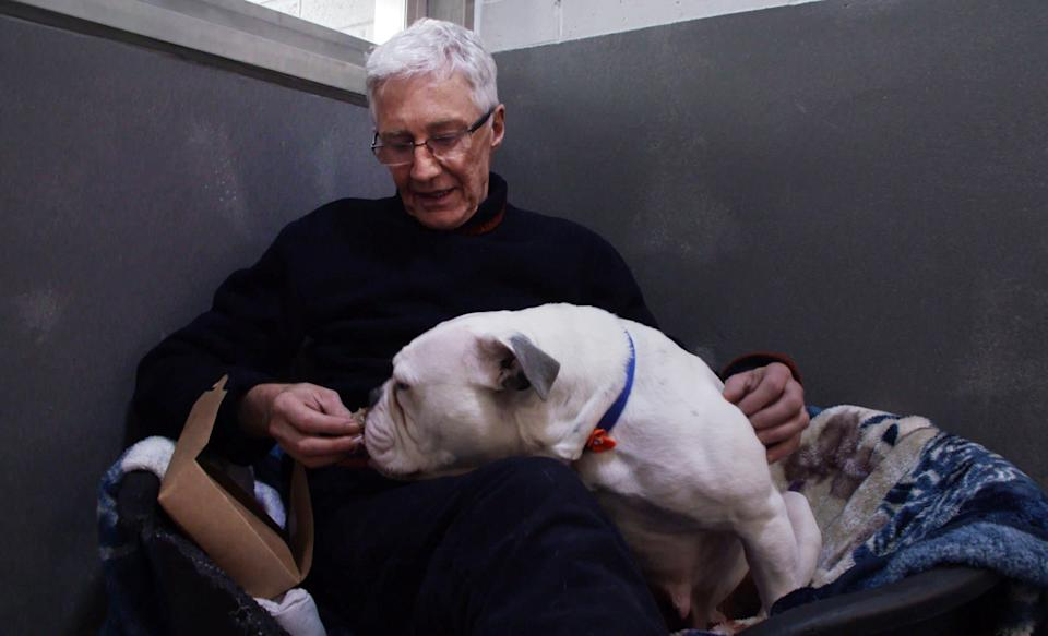 Paul O'Grady with a very nervous and shy Bulldog he calls Dottie. (ITV)