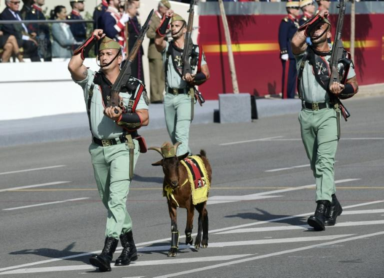 Legionnaires and their goat mascot march during the Spanish National Day military parade in Madrid on October 12, 2017