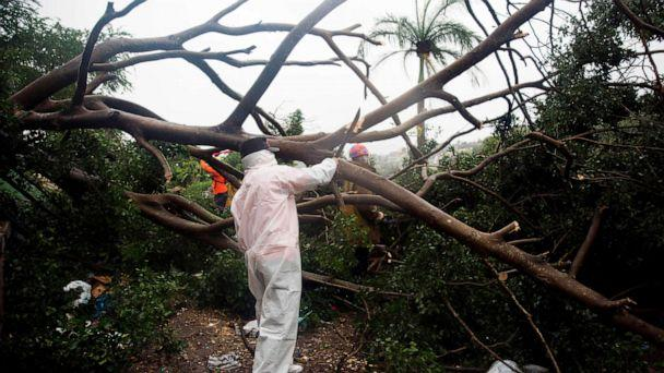 PHOTO: Fire and rescue members cut the branches of a tree that fell under the heavy rain caused by the Isaias Storm in Santo Domingo, on July 30, 2020. (Erika Santelices/afp/AFP via Getty Images)