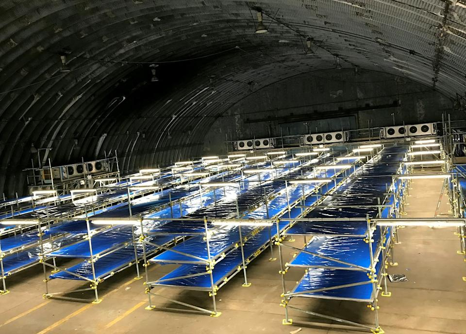 Chilling images and footage shows shelves ready to hold bodies of adult and child coronavirus victims in a temporary morgue erected at an Oxfordshire military base (SWNS)