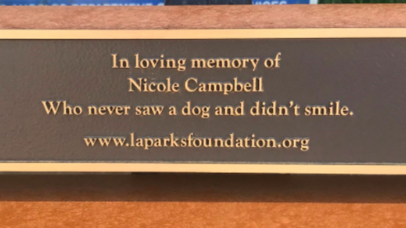 Memorial Bench Has A Nice Message But Definitely Needed A Better Editor