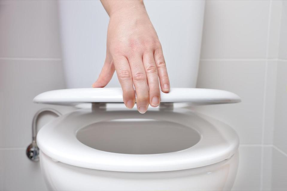 Woman's hand closes the toilet seat