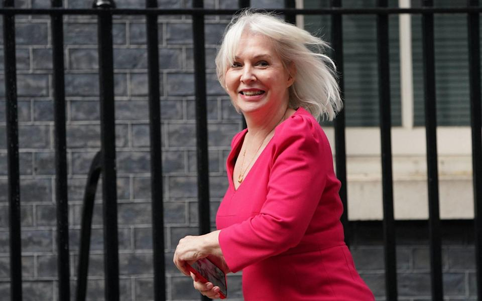Nadine Dorries, on her way into Downing Street to receive a promotion on Wednesday - Victoria Jones/PA