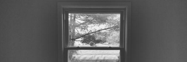 Looking outside from a grey room through a window to a tree and some grass