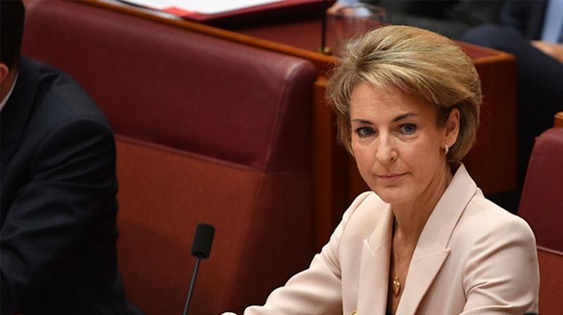 Michaelia Cash denied being the source and suggested nobody from her office was involved. Source: AAP