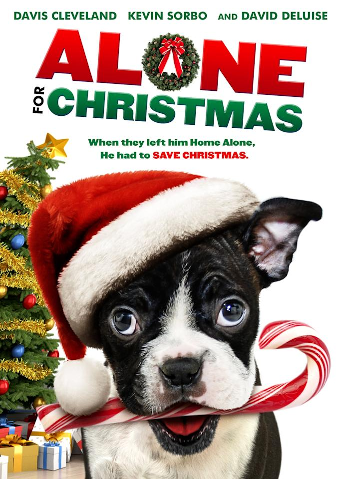 "<p>A disobedient dog tries to save Christmas in this holiday film. </p> <p><a href=""http://www.hulu.com/movie/alone-for-christmas-d76e6473-a1d6-4493-bdac-3718a4f22a1b"" target=""_blank"" class=""ga-track"" data-ga-category=""Related"" data-ga-label=""http://www.hulu.com/movie/alone-for-christmas-d76e6473-a1d6-4493-bdac-3718a4f22a1b"" data-ga-action=""In-Line Links"">Watch now</a>.<br></p>"