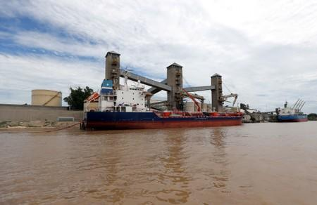 FILE PHOTO: Grain is loaded aboard ships for export at a port on the Parana river near Rosario