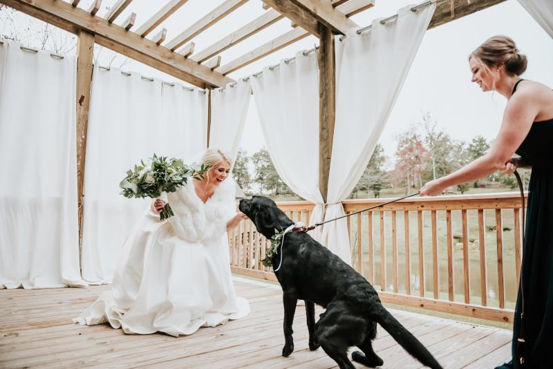 bride, Kirtsen Dupree, with her black labrador, Zeke, on her wedding day.