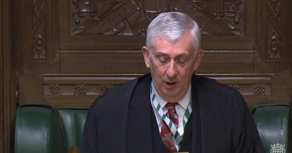 <p>Sir Lindsay Hotle</p> (Parliament TV)