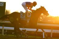 John Velazquez rides Authentic to win the Breeder's Cup Classic horse race at Keeneland Race Course, in Lexington, Ky., Saturday, Nov. 7, 2020. (AP Photo/Michael Conroy)