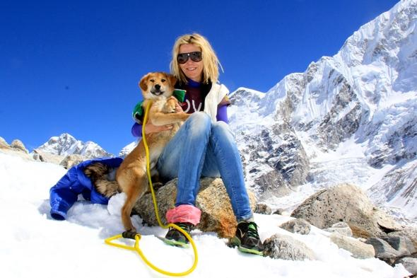 First dog climbs Mount Everest