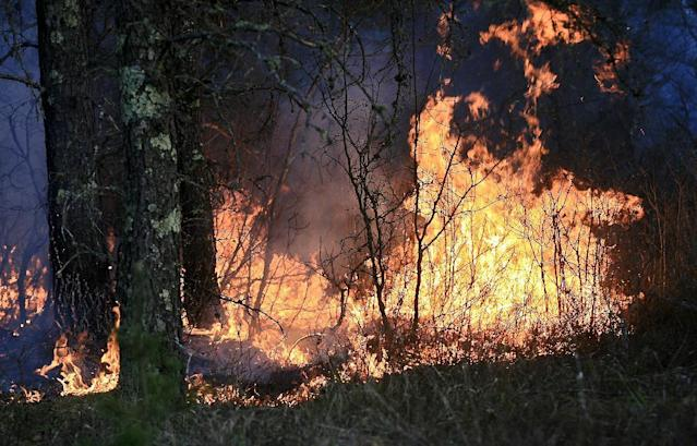 A wildfire actively burns through the forest along Sutfin Road east of Duck Pond Road in Highland Township, Wis., east of Solon Springs, Wis., late Tuesday, May 14, 2013. Crews from Wisconsin and Minnesota were trying to control a rapidly growing wildfire in northwestern Wisconsin that forced evacuations of the sparsely populated area. Several structures were destroyed in a mostly rural and wooded area east of Solon Springs as the forest fire grew to 9 square miles, the Wisconsin Department of Natural Resources said. No injuries had been reported. (AP Photo/The Duluth News-Tribune, Clint Austin)