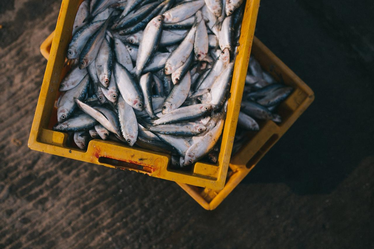 """<p>""""These fish are high in omega-3 fatty acids, vitamin D, vitamin B2, and other important nutrients like selenium and calcium,"""" explained Davis, who noted that small fish are also less likely to be contaminated with mercury than their larger counterparts. Of those, <a rel=""""nofollow"""" href=""""https://ods.od.nih.gov/factsheets/Choline-HealthProfessional/"""">vitamin D is especially crucial</a>: it helps the body absorb calcium, which is key for strong bones, and it's found in very few foods. Try adding fish like sardines and mackerel to salads and pasta dishes.</p>"""
