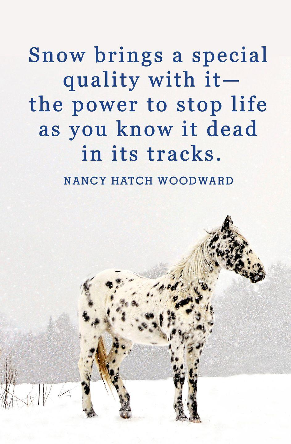 "<p>""Snow brings a special quality with it—the power to stop life as you know it dead in its tracks.""</p>"