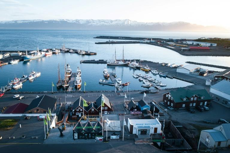 All the media attention surrounding Husavik's chances at an Oscar has been welcome publicity
