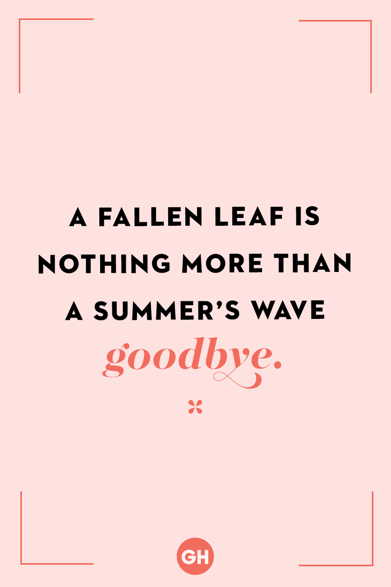 <p>A fallen leaf is nothing more than a summer's wave goodbye.</p>