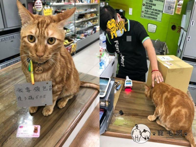 <p>Ga Mei took his first trip to the local convenience store to pick up his own food. (Photo courtesy of陳欣伶)</p>