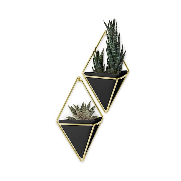 "These striking triangular wall-mounted brass planters are available in concrete, white, and black (pictured). $29, Overstock. <a href=""https://www.overstock.com/Home-Garden/Umbra-Trigg-Hanging-Planter-Wall-Decor-Set-of-2/19484939/product.html"" rel=""nofollow noopener"" target=""_blank"" data-ylk=""slk:Get it now!"" class=""link rapid-noclick-resp"">Get it now!</a>"