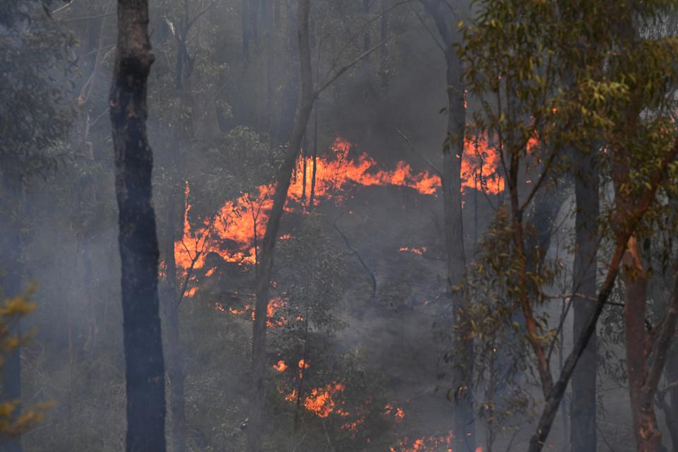 On Wednesday, NSW has a total fire ban in place across the state. Source: AAP Image/Dean Lewins.