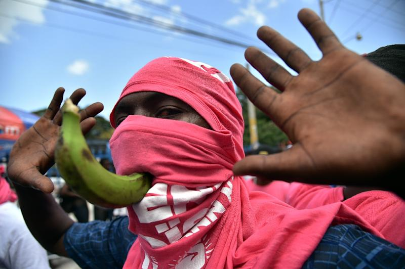 A supporter of ruling party candidate, Jovenel Moise, of PHTK political party (AFP Photo/Hector Retamal)