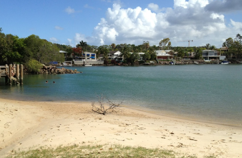 Noosa River in Queensland pictured after man was stung by a jellyfish.
