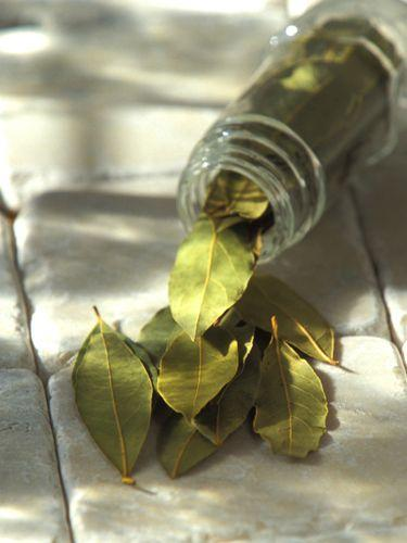 <p>A bay leaf slipped into a container of flour, pasta, or rice will help repel bugs.</p>