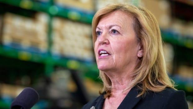 Ontario Health Ministe Christine Elliott says the province is ready to help Alberta during its deadly fourth wave.  (The Canadian Press - image credit)