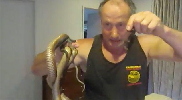 The Snake Man captured the snakes. Source: YouTube