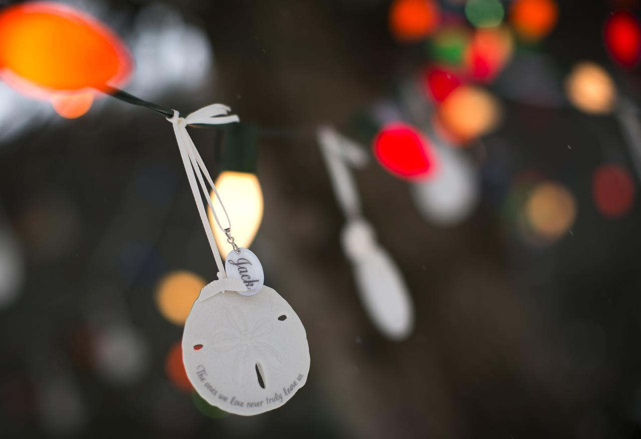 A sand dollar bearing the name of Sandy Hook Elementary School shooting victim Jack Pinto hangs from a tree as part of a memorial in the Sandy Hook section of Newtown, Connecticut December 14, 2013. Today marks the one year anniversary of the shooting rampage at Sandy Hook Elementary School, where 20 children and six adults were killed by gunman Adam Lanza. REUTERS/Carlo Allegri (UNITED STATES - Tags: CRIME LAW)