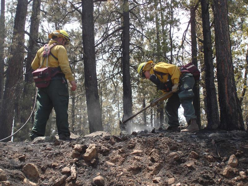 This photo provided by the U.S. Forest Service Gila National Forest on Thursday May 31, 2012, shows mop up operations along the northern edge of the Gila National Forest fire. The fire which grew Thursday to more than 190,000 acres, or nearly 300 square miles, as it raced across the area's steep, ponderosa pine-covered hills and through its rugged canyons in New Mexico near the Arizona border. (AP Photo/U.S. Forest Service Gila National Forest, John Roads)