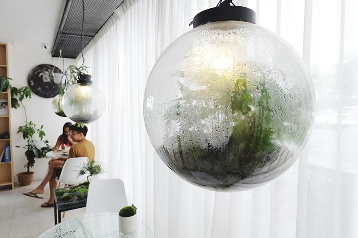 This light up terrarium called the 'Moon Forest' serves as ornamental lighting for the cafe