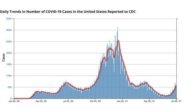 Coronavirus cases have been rising in the U.S. in recent weeks. The CDC says the delta variant of the virus, which is more contagious than others, currently makes up the majority of new cases. (Photo: CDC.gov)
