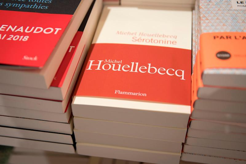 The wait is over: Michel Houellebecq's novel Serotonin was published in French, German, Italian and Spansh earlier this year. Why English speakers have had to wait so long is not clear (AFP/Getty Images)