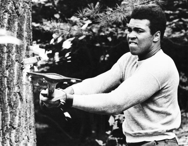 FILE - In this Aug. 23, 1973, file photo, boxer Muhammad Ali chops at a tree with an axe at his training camp in Deer Lake, Pa., in preparation for his return match against Ken Norton. The rustic Pennsylvania training camp where Ali prepared for some of his most famous fights has undergone an elaborate restoration. The camp in Deer Lake opened to the public Saturday, June 1, 2019 as a shrine to his life and career.(AP Photo/Rusty Kennedy, File)