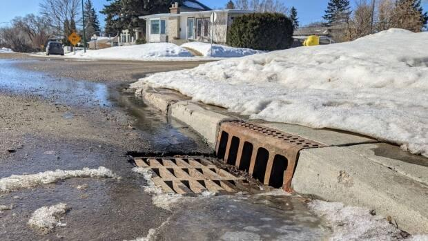 The City of Regina asks residents to be mindful of traffic and COVID-19 restrictions when clearing their adopted storm drains. (Ashleigh Mattern/CBC - image credit)
