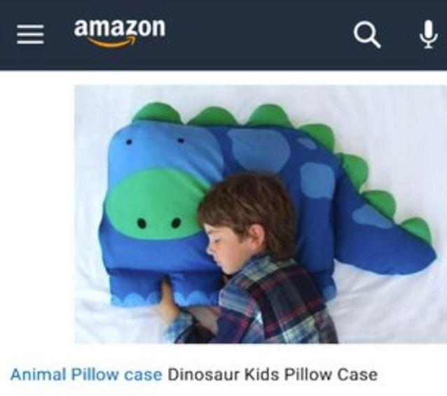 Amazon Pillow Case Shopping Fail