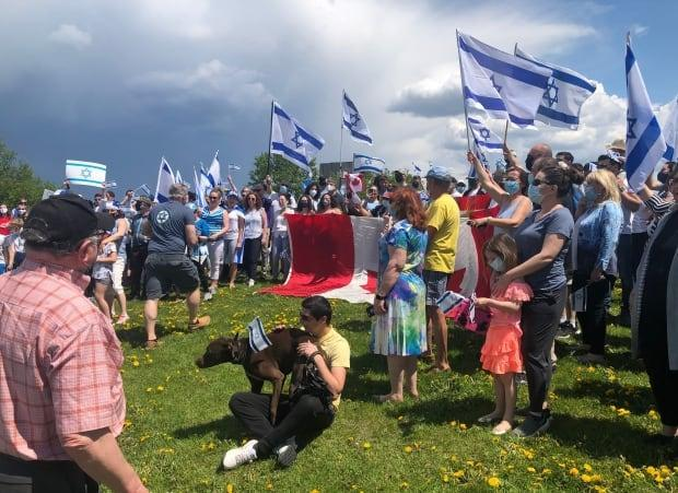 Pro-Israel demonstrators held an outdoor rally, followed by a car convoy, in Ottawa on Sunday. Cities across Canada have seen demonstrations amid the ongoing violence between Israeli forces and Palestinians. (Krystalle Ramlakhan/CBC - image credit)