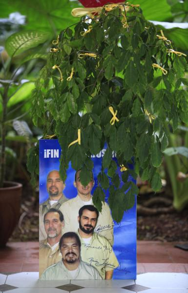 """A picture of """"The Cuban Five"""" sits under a branch covered in yellow ribbons at a ceremony commemorating the 15th anniversary of the arrest of five Cuban agents, at an elementary school in Old Havana, Cuba, Thursday, Sept. 12, 2013. Rene Gonzalez, one of the five who was freed in 2011, called for people to wear and hang yellow ribbons to press for the release of the four others still in U.S. prisons who were convicted of spying. Gonzalez is in the photograph at center left. (AP Photo/Franklin Reyes)"""