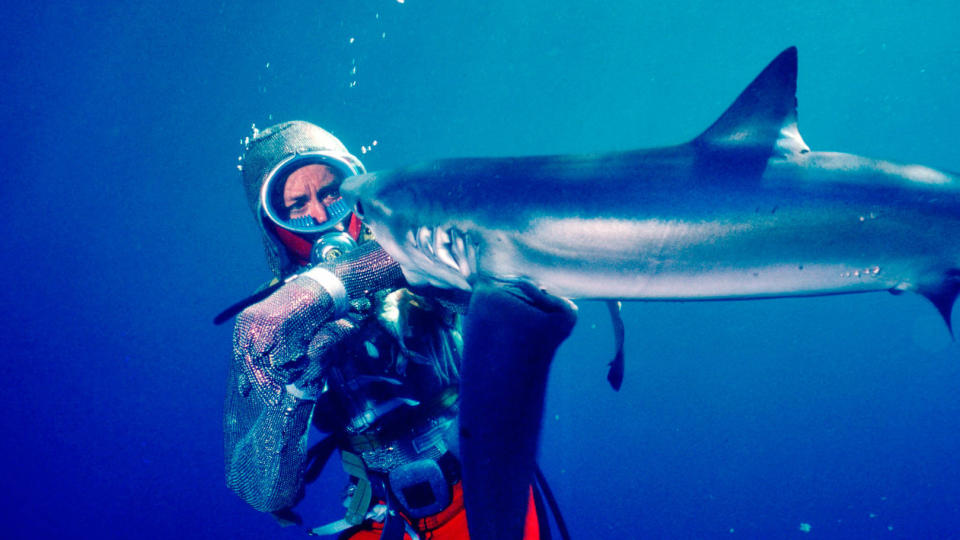 'Playing With Sharks'. (Nat Geo/Disney)