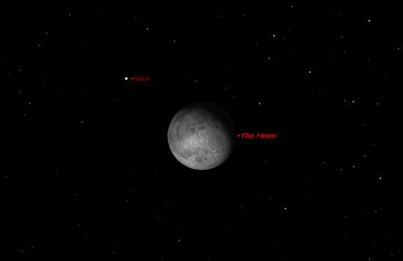A close-up view of the night sky on March 1 at 1 a.m. shows the waxing gibbous moon and the star Spica making a close pass.