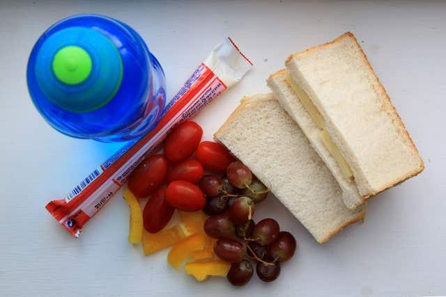 Packed lunch for school survey