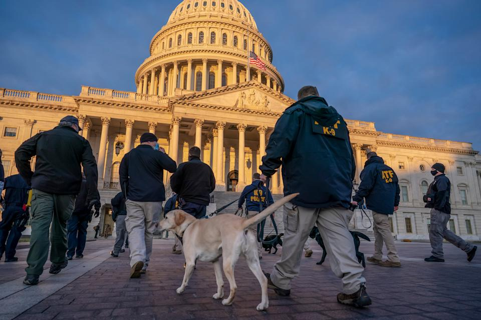 Federal K-9 units prepare for a security sweep in preparation for the inauguration ceremonies on Capitol HillAP