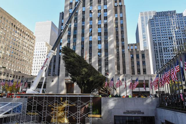 The 75-foot Norway Spruce from State College, Pennsylvania, will become the 86th Christmas tree to grace the plaza.