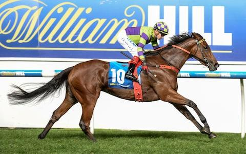 William Hill - Credit: Sarah Ebbett/Racing Photos