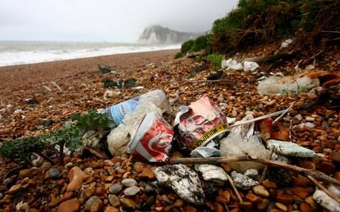 Litter-droppers ruin beaches and leave us fuming with irritation - Credit: Gareth Fuller/PA