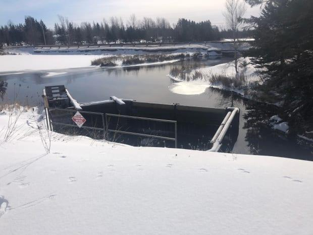 Tom Duffy, Ducks Unlimited's manager of Atlantic operations, said reconstructing the dam and water control structure would cost around $750,000, and more money would be needed to manage it for another 50 to 70 years.