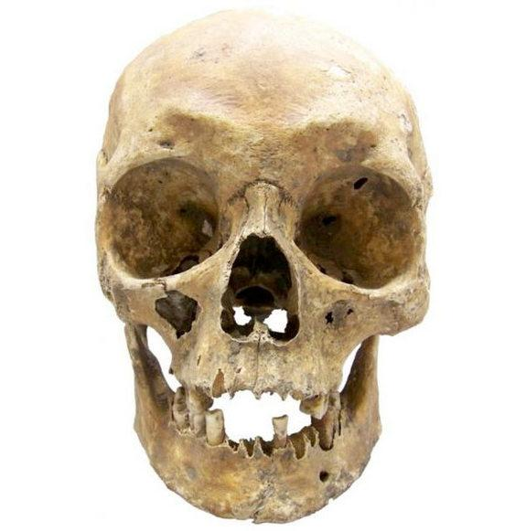 DNA Technique Reveals Looks of Long-Dead Humans