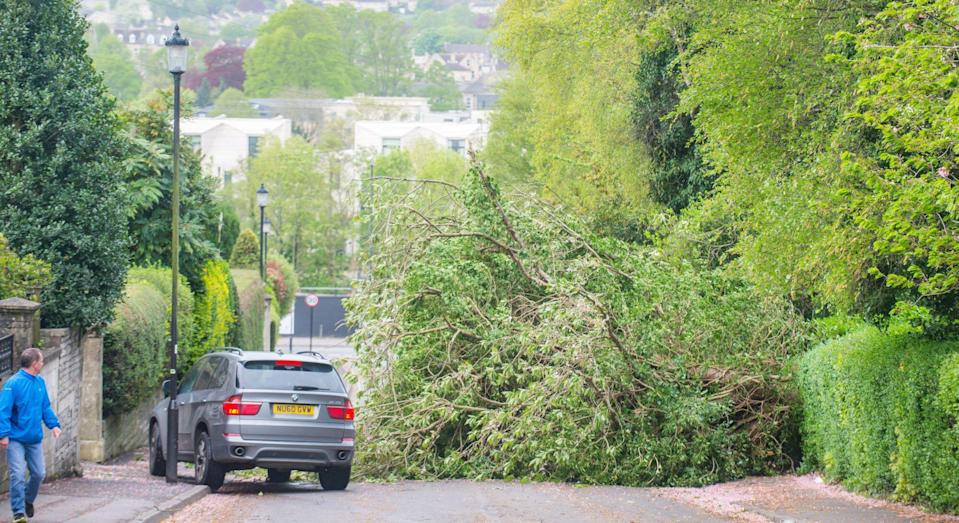 Storm Hannah caused disruption as winds of up to 82mph took out power lines and blocked roads (Picture: SWNS)