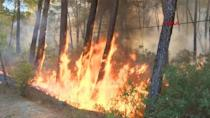 Fire crews continue to battle wildfires in Turkey