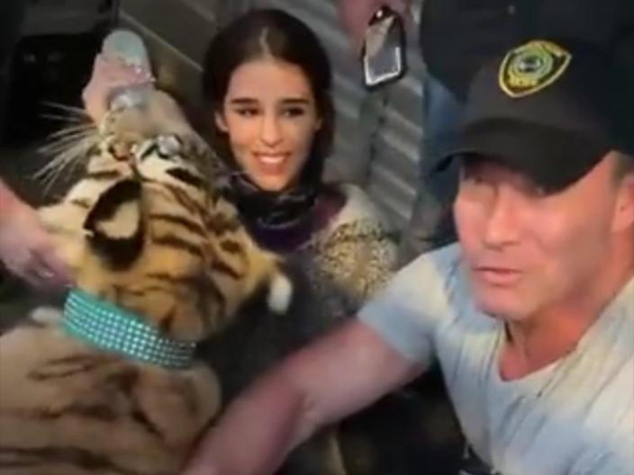<p>Houston police reveal they've recovered the missing Bengal tiger after nearly a week-long search</p> (Houston Police Department)